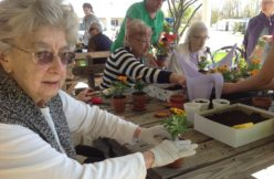 Intergenerational planting activities with seniors