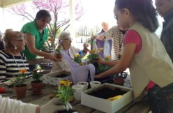 Intergenerational planting activities